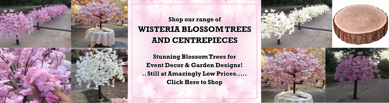 BLOSSOM TREES  SALE