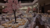 5ft-Pink-Blossom-Tree-Centerpiece-For-Wedding_1.jpg