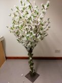 5FT White Cherry Blossom Tree (150cm)