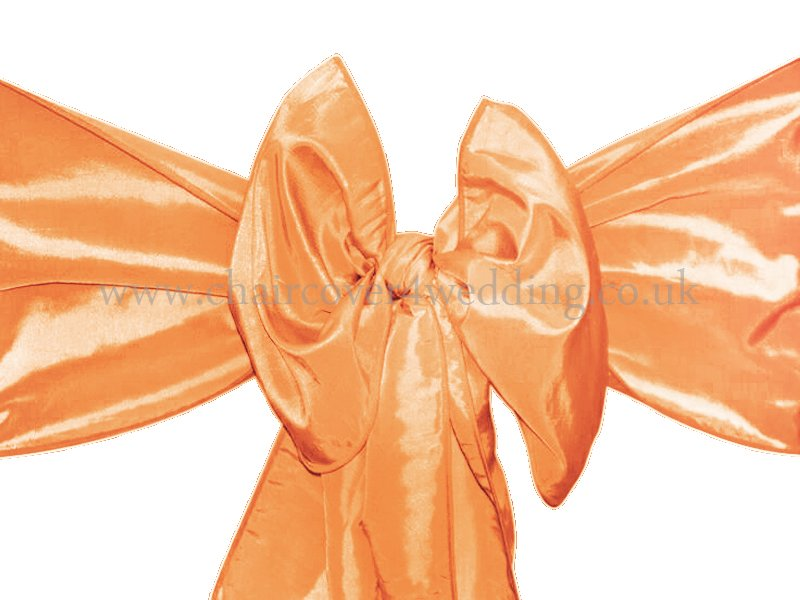 Orange Taffeta Sashes